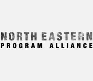 north-eastern-program